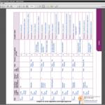 Przetłumaczony tekst zaimportowany do oryginalnego PDFa. Bez programu do składu stworzenie takiej tabeli nie jest trywialne. (Rozmycie dodane w celu ukrycia zastrzeżonych nazw).